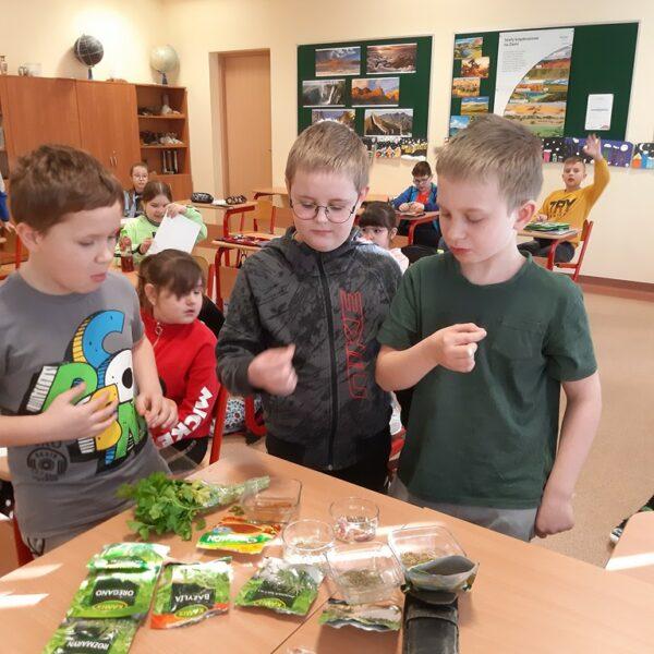 Uczniowie próbują smaku przypraw i ziół