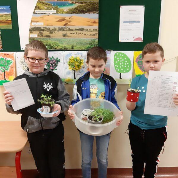 Uczniowie prezentują swój projekt badawczy
